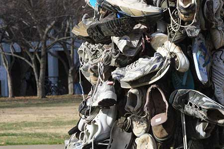 Stock Photo/The News The shoe tree stands outside Wilson Hall and is covered with approximately 50 pairs of shoes.