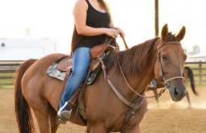 Emily Harris/The News Jessica Roy, senior from Vera Cruz, Pennsylvania, rides her horse during practice Tuesday night.