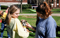 McKenna Dosier/The News Lizzie Shaylor, senior from Mayfield, Kentucky, petting one of the puppies up for adoption.