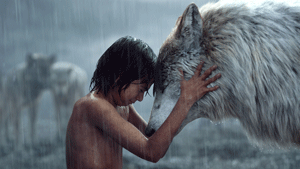 Photo courtesy of slashfilm.com  Mowgli says goodbye to his wolf parents in the new blockbuster film 'The Jungle Book.'