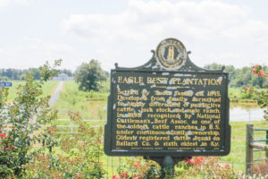 Photo by McKenna Dosier /  The historic Eagle Rest Plantation will be placed in University control immediately, but will be bequeathed in the future – a life estate gift granted on the donors passing.