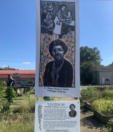 Traveling art exhibit honors Kentucky women, native plants